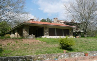Sale  Villa in  Fiesole  olmo